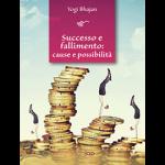 Successo e fallimento: cause e possibilità