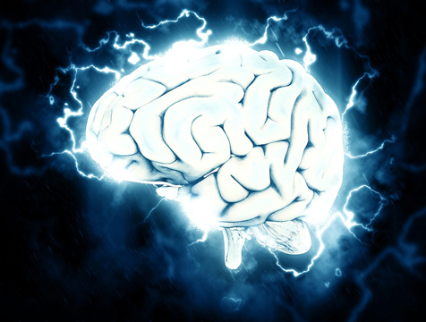 brain_pixabay.com_TheDigitalArtist