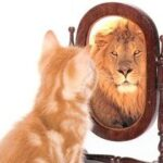 Lo specchio che ingrandisce